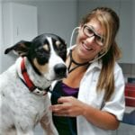 Veterinarian-DrTinaRamer-Apollo Beach-FL-Walkin-Veterinary-Care